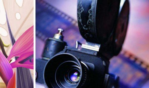5-pozitivnyh-filmov-blog-formirovanie-lichnosti